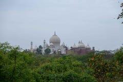 Taj Mahal från en beskåda punkt på Taj Nature Walk royaltyfria bilder
