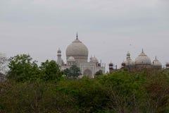 Taj Mahal från en beskåda punkt på Taj Nature Walk arkivbilder