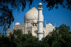 Taj Mahal från trädgård Royaltyfri Bild