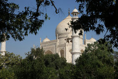 Taj Mahal from the Gardens. View of the Taj Mahal from the gardens on a sunny day Stock Photo