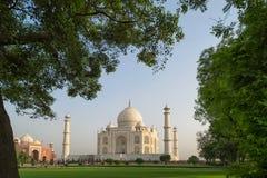 Taj Mahal-Grab und grünes Gras am blauen Himmel in Agra, Indien Lizenzfreies Stockbild