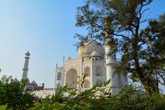 Taj Mahal hiding in the beauty of nature royalty free stock photos