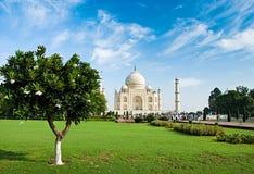 Taj Mahal i soluppgångljus, Agra Fotografering för Bildbyråer
