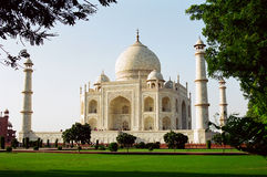 Taj Mahal, India. The Taj Mahal with grass and trees royalty free stock images