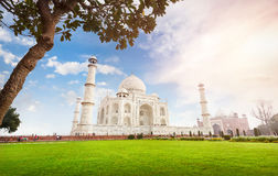 Taj Mahal in India Fotografia Stock