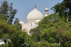 Taj Mahal India, Agra 7 światowych cudów Piękna Tajmahal mostownica Zdjęcia Stock