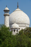 Taj Mahal India, Agra 7 światowych cudów Piękna Tajmahal mostownica Obraz Royalty Free