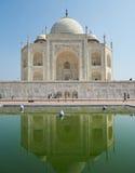 Taj Mahal India, Agra. 7 world wonders. Beautiful Tajmahal trave Stock Photography