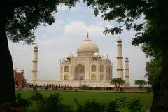 Taj Mahal - India. The Taj Mahal sits regally stock photography