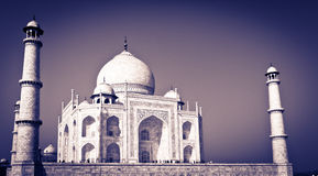 Taj Mahal Indien stockfoto