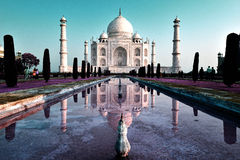 Taj Mahal, Infra-Red. The Taj Mahal, crown of palaces,  is a white marble mausoleum located in Agra, Uttar Pradesh, India. It was built by Mughal emperor Shah Stock Images