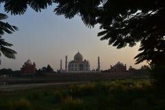 Taj Mahal komplex Agra Arkivfoto