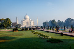 Taj Mahal and lawn Stock Photography