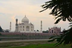 Taj-Mahal mausoleum Royaltyfri Foto