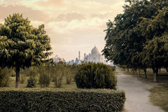 Taj Mahal mausoleum back view from Mehtab Bagh Royalty Free Stock Photo