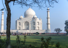 Taj Mahal mausoleum seen from under a tree against blue skies at Stock Images