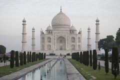 Taj Mahal med pölen agra india Fotografering för Bildbyråer