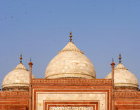 Taj Mahal Mosque detail. Agra, India Royalty Free Stock Image