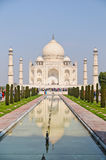 The Taj Mahal at noon Royalty Free Stock Photos