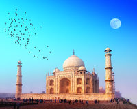 Taj Mahal Palast in Indien Stockfotografie