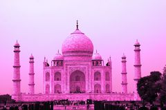 Taj Mahal In Pink, Agra, Uttar Pradesh, India. A world landmark and one of India`s most recognisable buildings is a the white marble mausoleum built by the Royalty Free Stock Photo