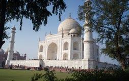 Taj Mahal Seitenansicht gesehen hinter Bäumen Stockfoto