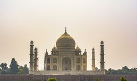 Taj Mahal - sikt från trädgård royaltyfria foton