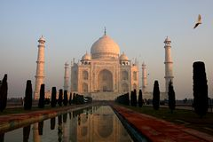 Taj Mahal soluppgång arkivfoton