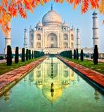 Taj Mahal at sunrise, Agra, Uttar Pradesh, India. Royalty Free Stock Images