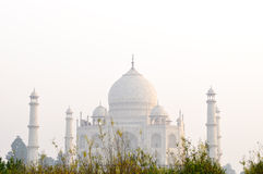 Taj Mahal on sunset Stock Images