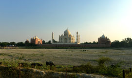 Taj Mahal at Sunset, India Stock Photo