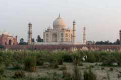 Taj Mahal at Sunset. The Taj Mahal, viewed from across the Yamuna River, at sunset Stock Photo