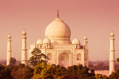 Taj Mahal von weitem stockfotografie