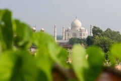 Taj Mahal widok od wierzchołka, Agra, India Zdjęcie Stock