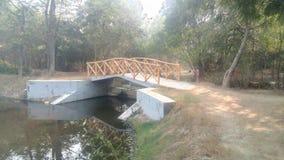 Taj Nature Walk. Bridge in Taj Nature Walk, Agra, Uttar Pradesh, India Stock Image