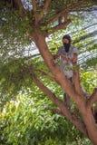 Tajada reducida un árbol para la seguridad y la ordenanza del pozo Fotografía de archivo libre de regalías