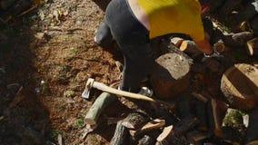 Tajar el time lapse de madera almacen de metraje de vídeo
