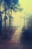 Tajemnica park Fotografia Royalty Free