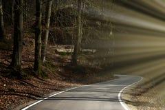 Tajemnicy wycieczka turysyczna Wijącej drogi wiodąca skalista dolina Backlight światło słoneczne Obrazy Royalty Free