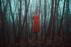 Tajemnicza postać w nieżywym lesie Zdjęcia Royalty Free