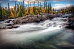 Tajemnicza Rzeka Zdjęcie Royalty Free