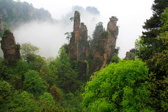 Tajemnicze góry Zhangjiajie. Zdjęcie Royalty Free