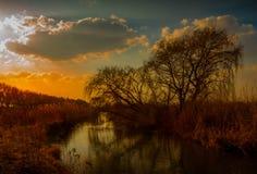 Tajemniczy afrykanina krajobraz przy zmierzchem Zdjęcie Royalty Free