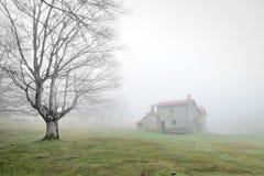 Tajemniczy dom w lesie z mgłą Zdjęcia Stock