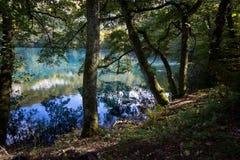 tajemniczy jezioro Obrazy Royalty Free