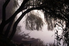 tajemniczy jezioro Zdjęcie Stock