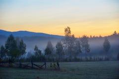 Tajemniczy mgłowy krajobraz Obrazy Royalty Free