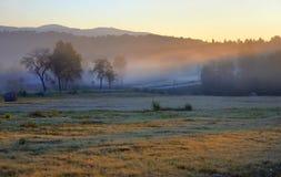 Tajemniczy mgłowy krajobraz Obraz Stock
