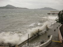 Tajfun Hagupit uderza Hong Kong zażarcie Fotografia Stock