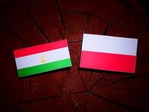 Tajikistan flag with Polish flag on a tree stump isolated. Tajikistan flag with Polish flag on a tree stump royalty free illustration
